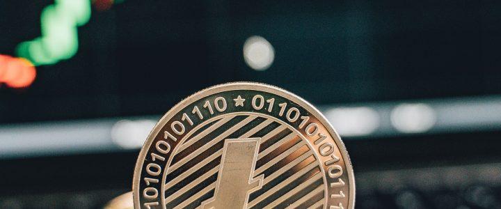Wat zijn de nadelen van Litecoin?